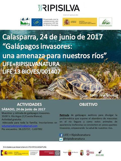 Retirada de galápagos invasores, con LIFE Ripisilvanatura