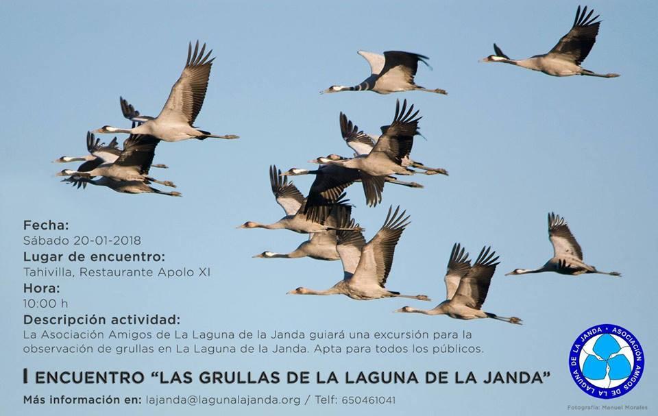 """I Encuentro """"Las Grullas de la Laguna de la Janda"""", con Asociación de Amigos de la Laguna de la Janda"""