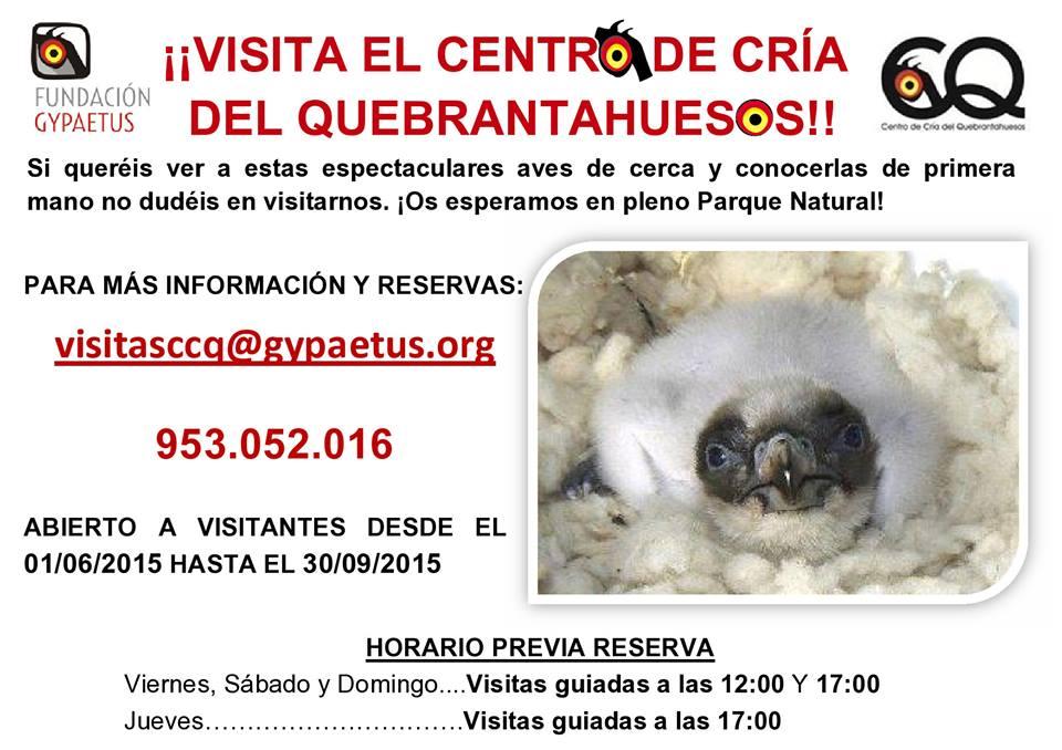Visita al Centro de Cría del Quebrantahuesos con la Fundación Gypaetus