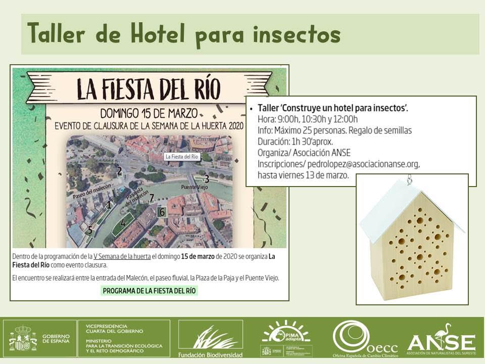 Taller de hotel para insectos, con ANSE