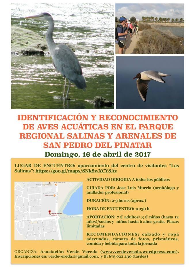 Identificación de aves acuáticas, con Verde Vereda