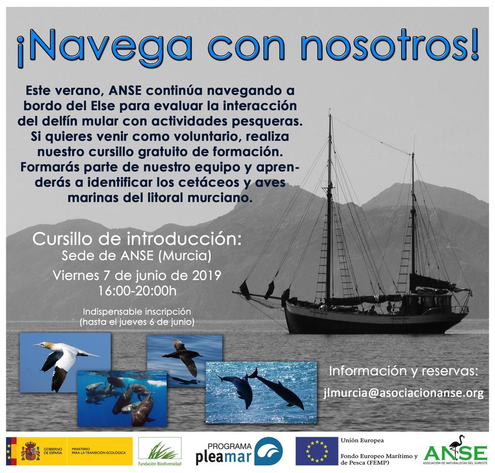Introducción a la identificación de aves marinas y cetáceos, con ANSE
