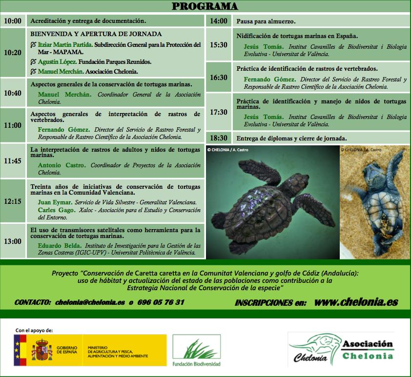 Identificación de rastros y nidos de tortugas marinas, con Chelonia