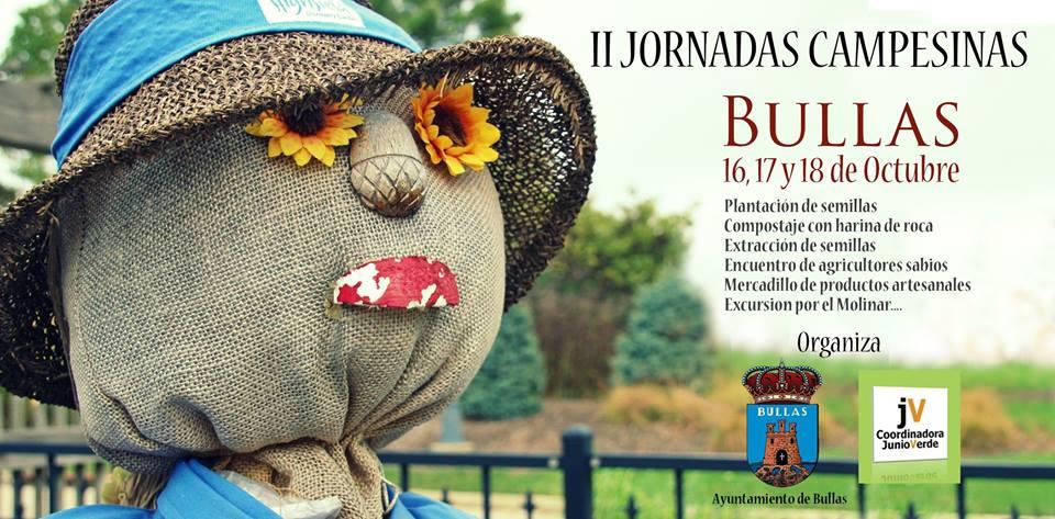 II Jornadas Campesinas con Junio Verde. Cartel