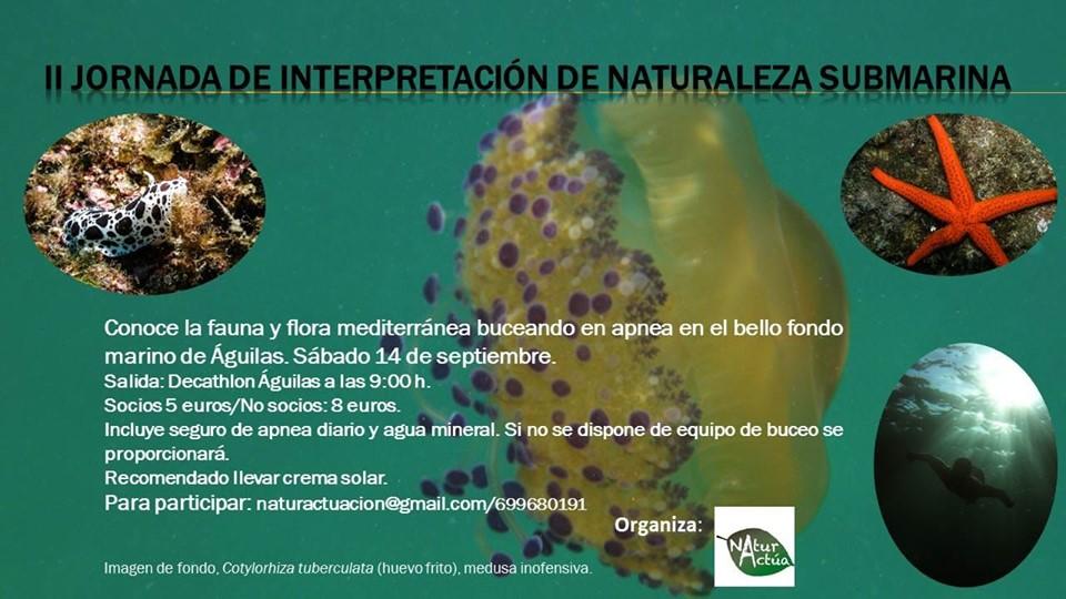 II Jornada de interpretación de naturaleza submarina, con NaturActúa
