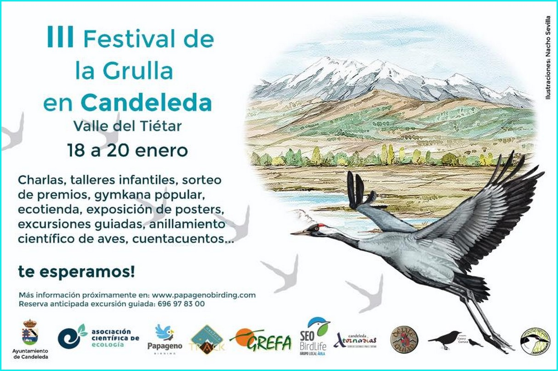 III Festival de la Grulla en Candeleda. Cartel