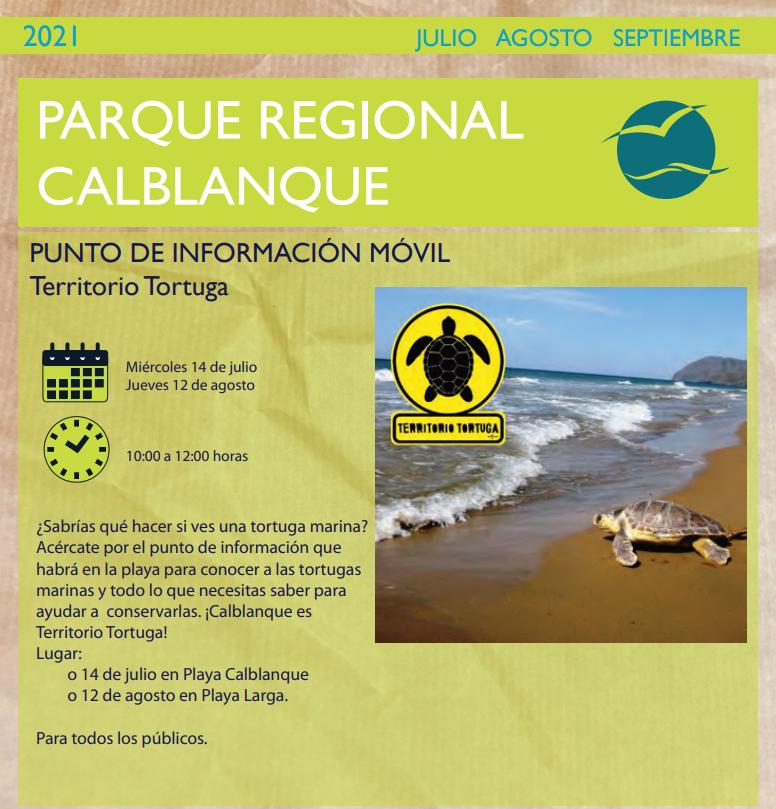Información sobre tortugas marinas en Calblanque 1