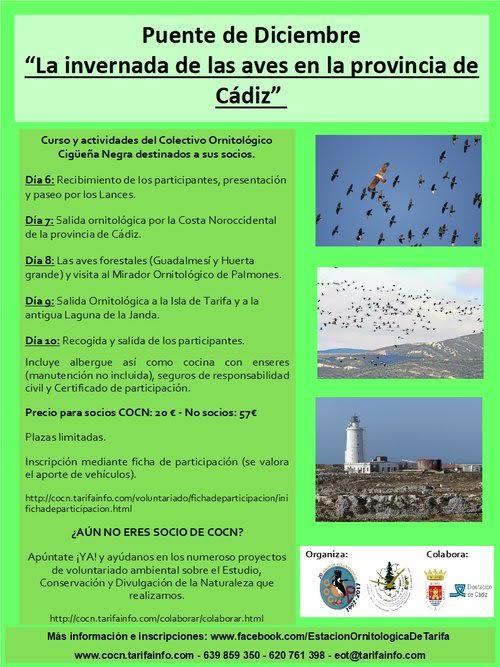 Invernada de aves en Cádiz, con COCN
