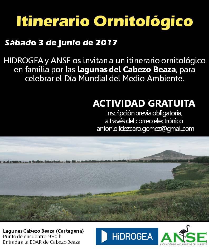 Itinerario Ornitológico en familia, con Hidrogea