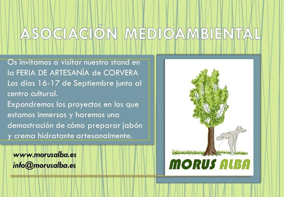 Demostración: preparar jabón y crema artesanales, con Morus Alba