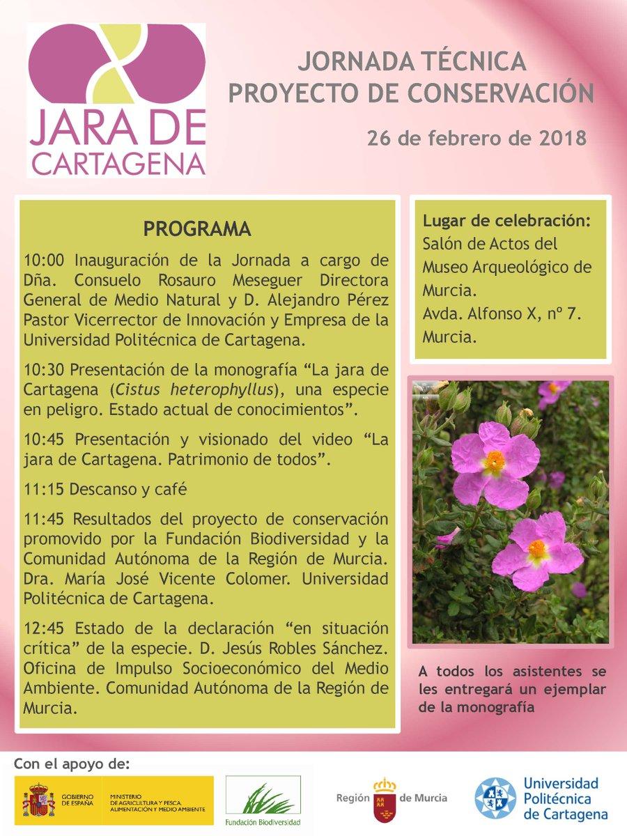 Jornada sobre el Proyecto de la jara de Cartagena, con la UPCT