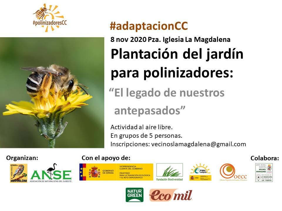 Plantación de un jardín para polinizadores, con ANSE