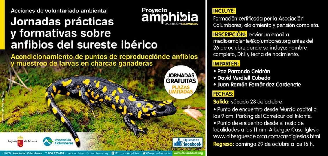 Jornadas de voluntariado para la conservación de anfibios, con la Asociación Columbares