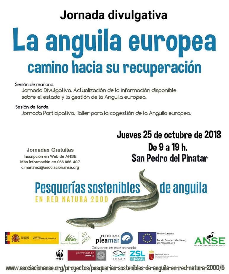 Jornada sobre la anguila europea, con ANSE