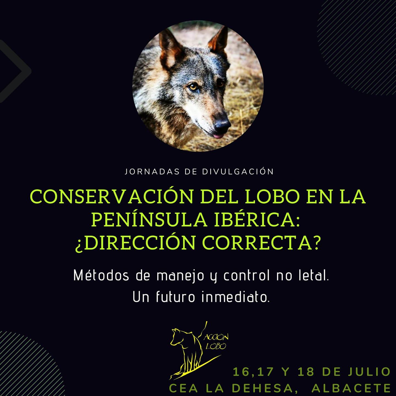 Jornadas sobre la conservación del lobo en la Península, con Acción Lobo