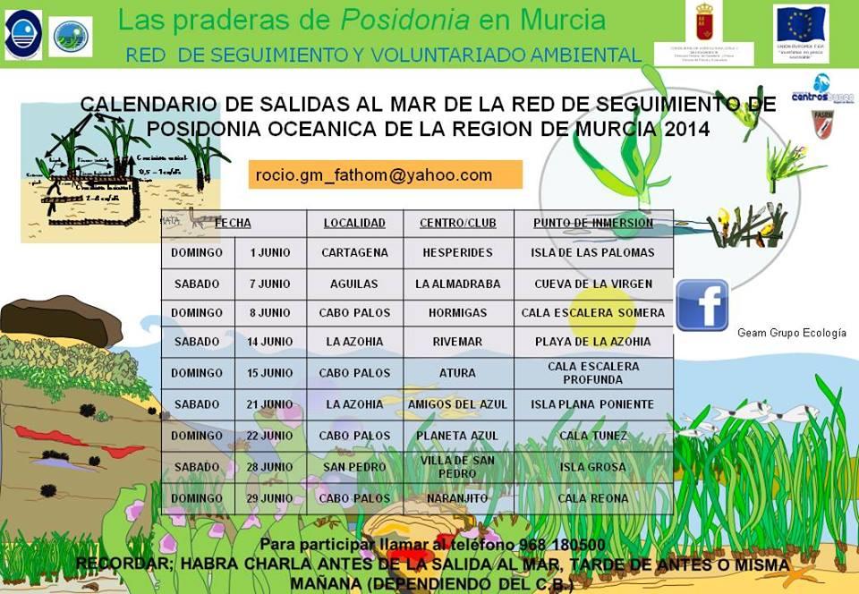 Red de Seguimiento de Posidonia oceanica, calendario