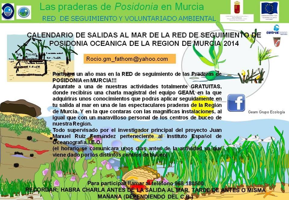 Red de Seguimiento de Posiconia oceanica, info