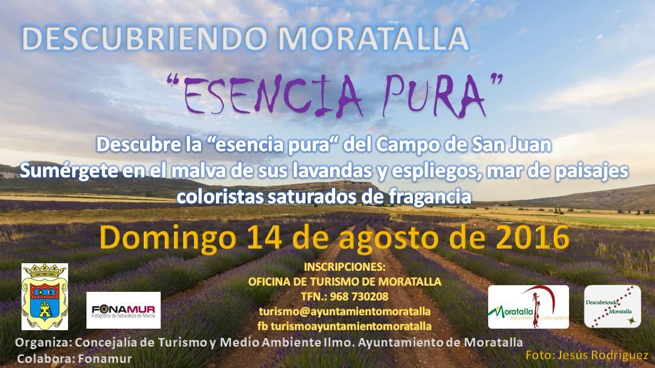 Ruta por los campos de lavanda y espliego, dentro del programa 'Descubriendo Moratalla'