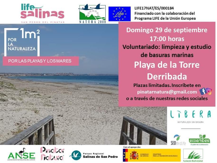 Limpieza de playa de la Torre Derribada, con el LIFE Salinas