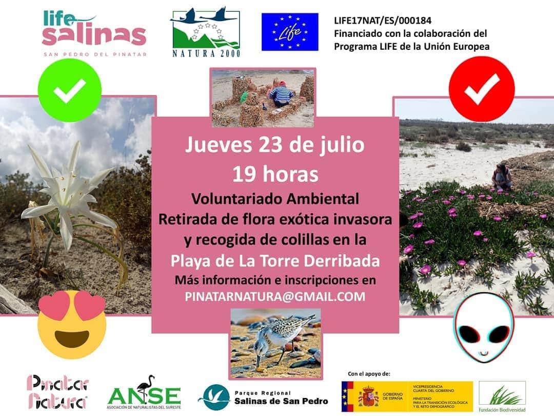 Limpieza de la playa de la Torre Derribada, con LIFE Salinas