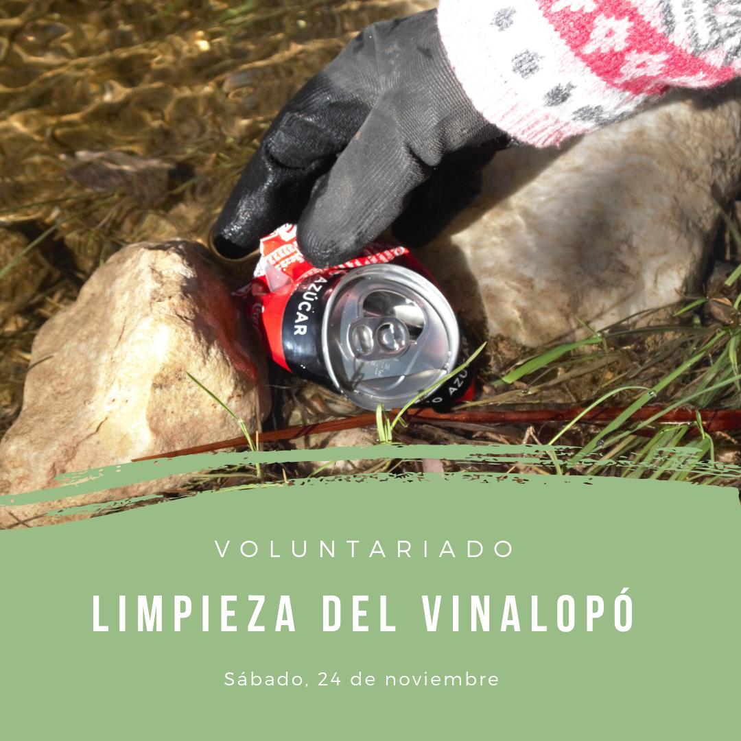 Voluntariado de limpieza del río Vinalopó, con la UMH