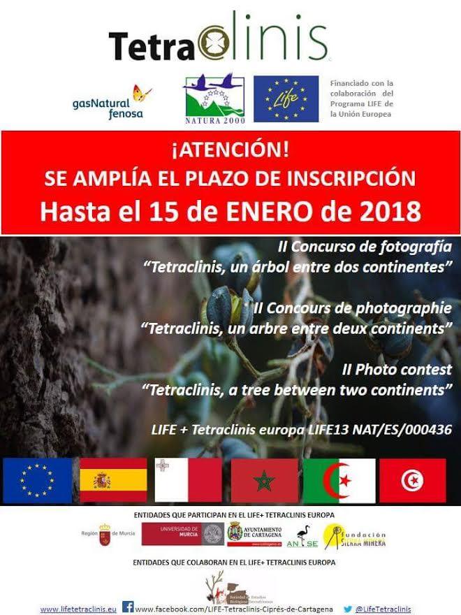 ll concurso de fotos sobre el ciprés de Cartagena, con el LIFE Tetraclinis