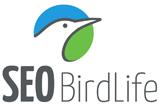 Logo de SEO