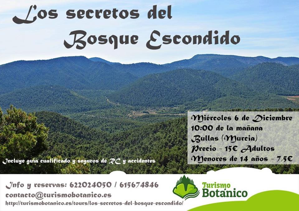'Los secretos del bosque escondido', con Turismo Botánico