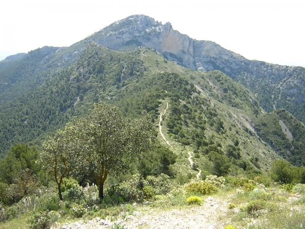 Sierra de Maigmó. Foto: UMH.