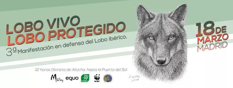 Manifa a favor del lobo