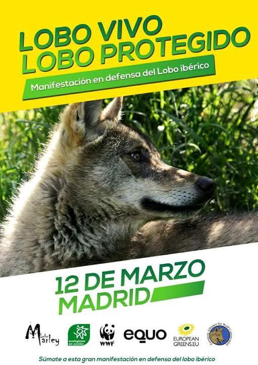 II Manifestación por la protección del lobo, con Lobo Marley y otros