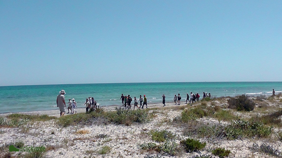 Paseo por la orilla del Mar Menor.