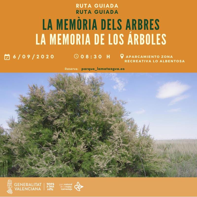 La memoria de los árboles, con la GV