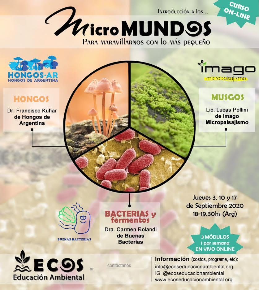Curso musgos, hongos, bacterias y fermentos, con ECOS