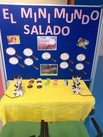'El Mini Mundo Salado', todos los días de febrero en el Centro de Visitantes Las Salinas, de San Pedro del Pinatar.