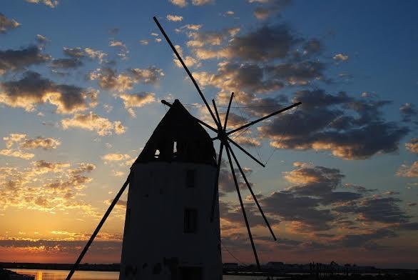 Molino de Quintín Autor Luís Costa Guirao . Imagen cedida por el SIPR Salinas y Arenales San Pedro del Pinatar
