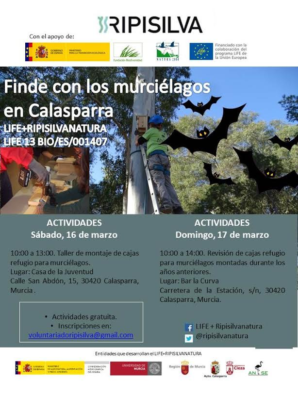 Finde con los murciélagos en Calasparra 1, con ANSE