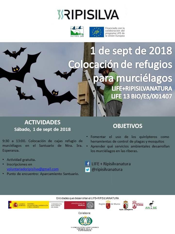 Colocación de refugios para murciélagos, con ANSE