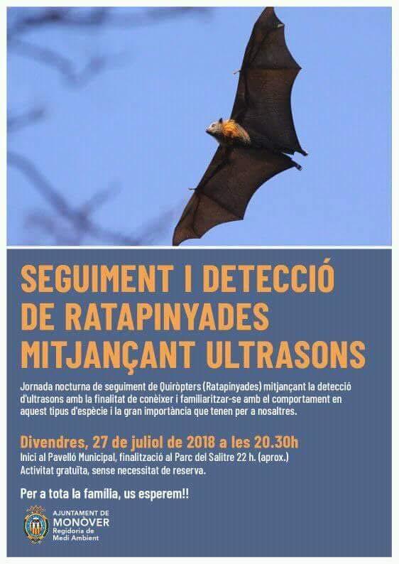 Seguimiento de murciélagos, con el Ayto. de Monóvar