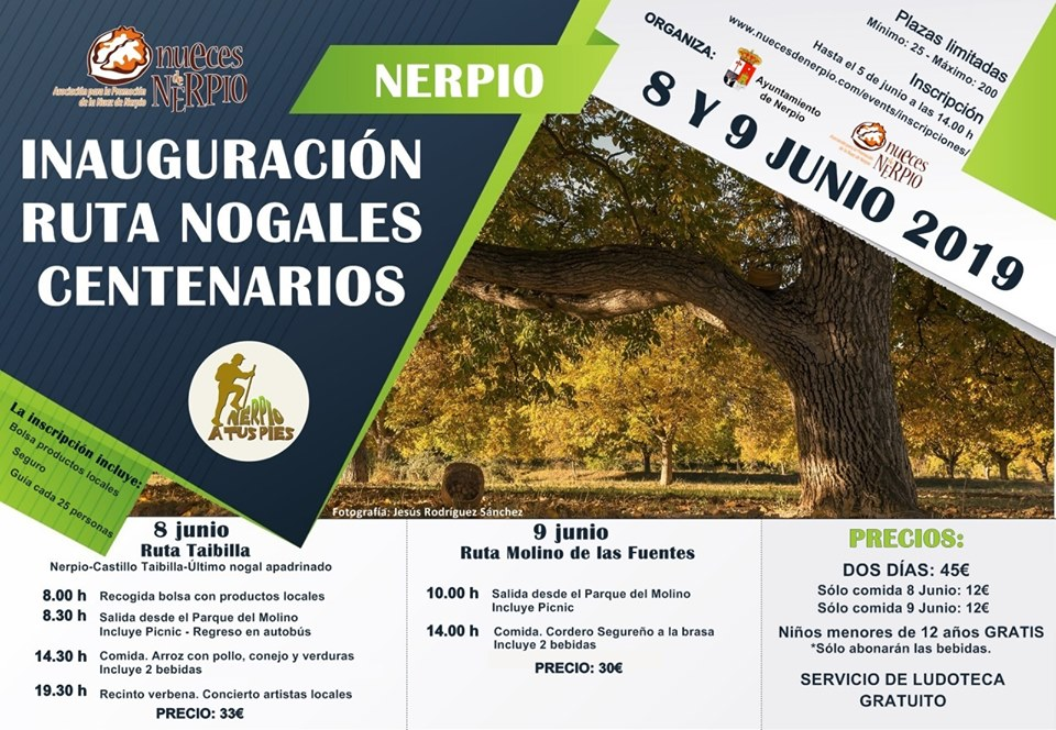Inauguración de la Ruta Nogales Centenarios de Nerpio, con Nueces de Nerpio