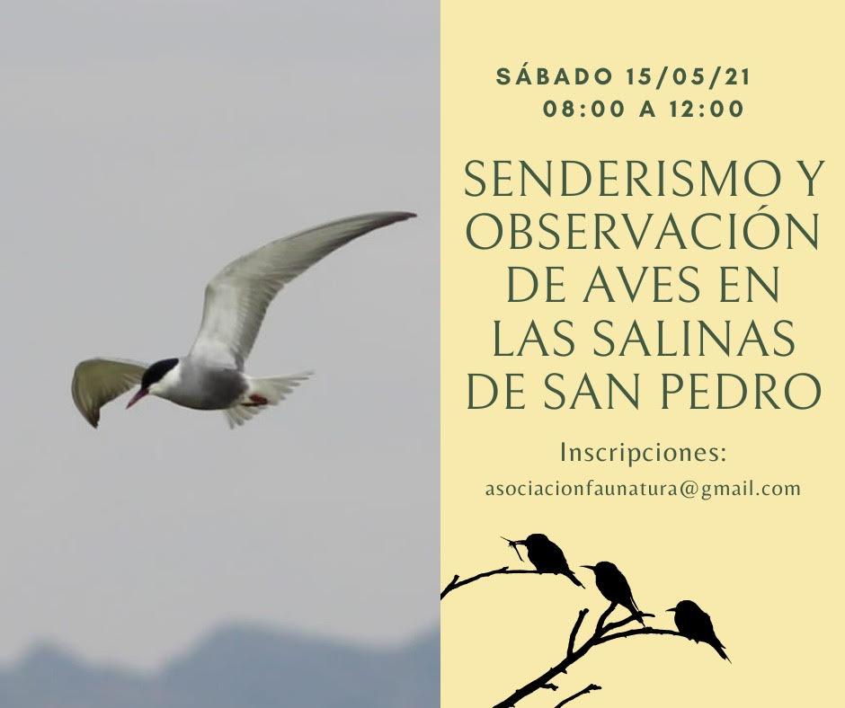 Senderismo y  observación de aves, con Faunatura