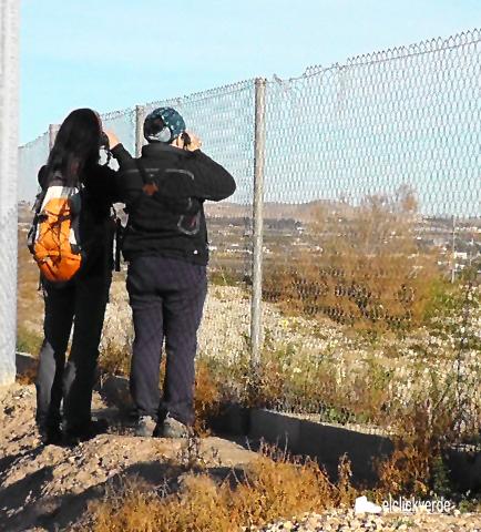 Curso de Guía de turismo ornitológico en espacios naturales, con la  Junta de Andalucía