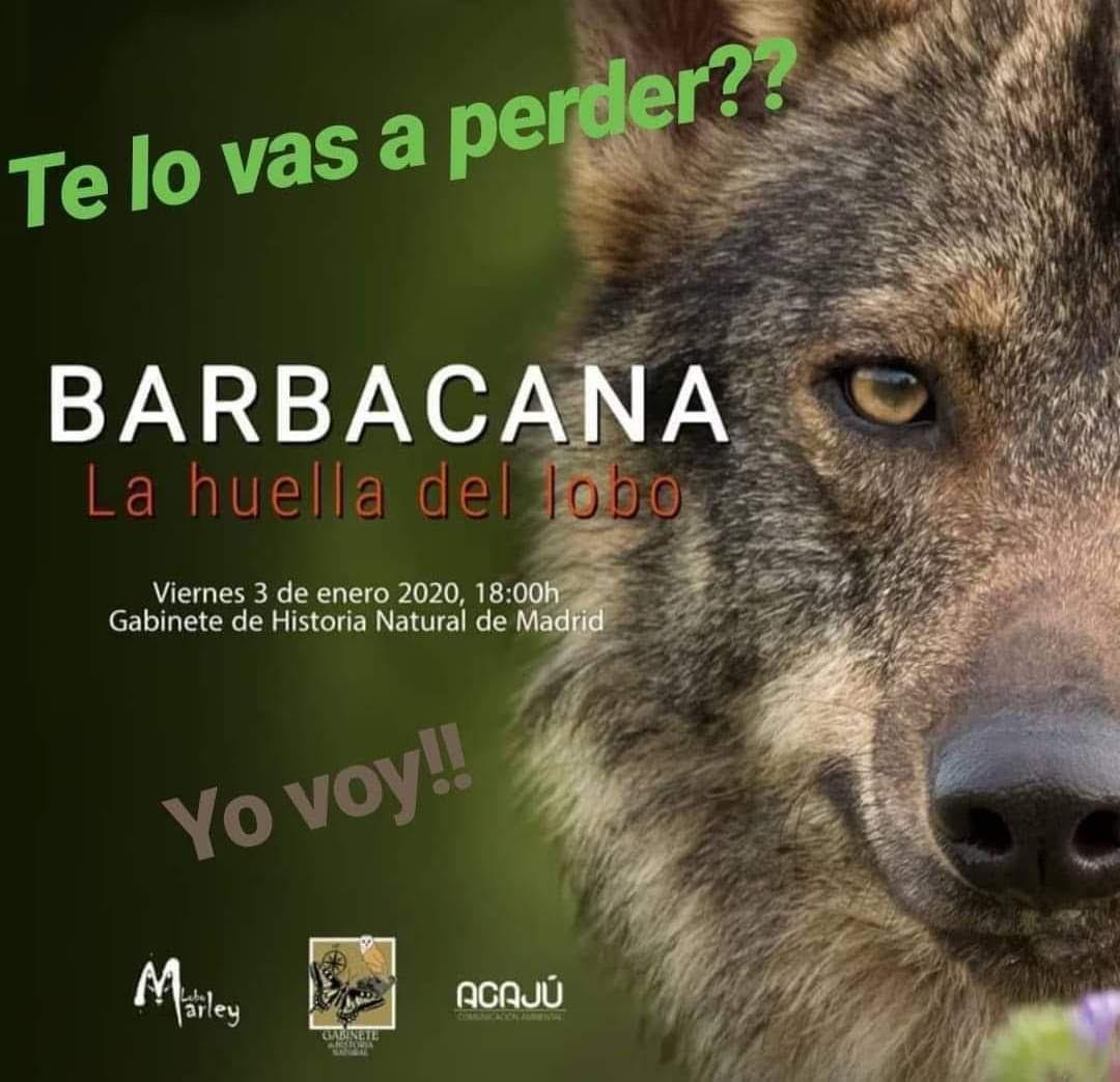 Proyección de 'Barbacana, la huella del lobo', con Lobo Marley