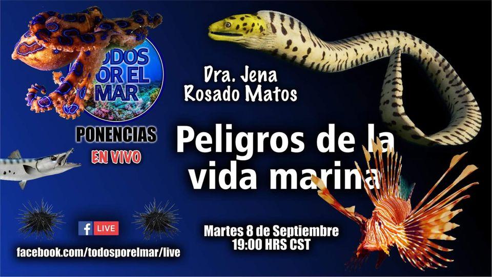 Ponencia On Line: Peligros de la vida marina, con Todos por el Mar