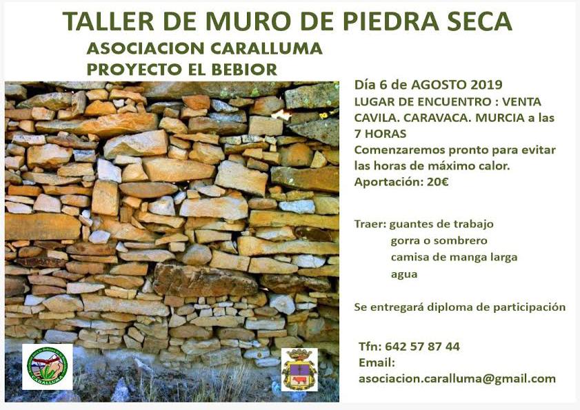 Taller de muro a piedra seca, con Caralluma