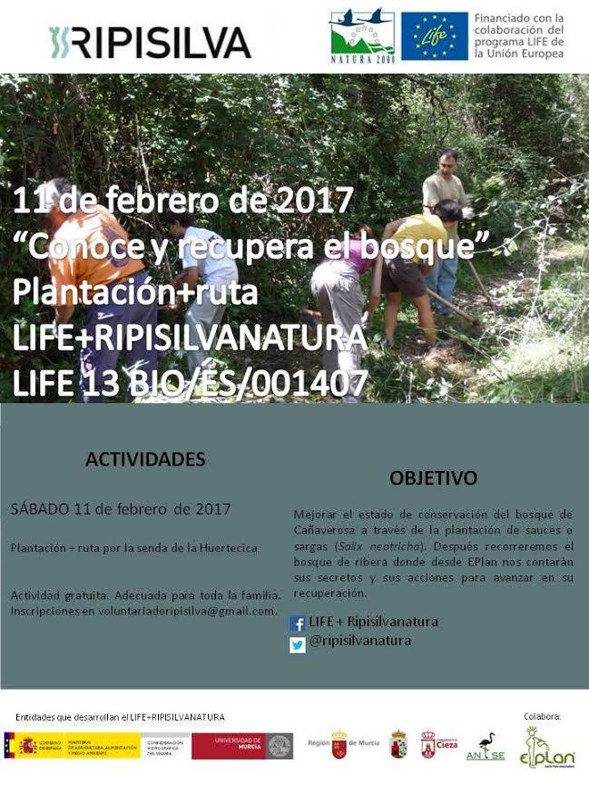 Plantación + ruta en Cañaverosa, con el LIFE Ripisilva
