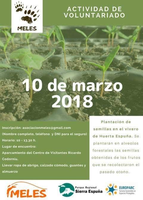 Plantación de semillas en vivero, con MELES