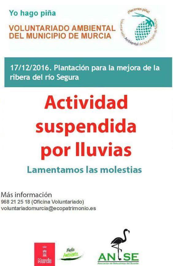 Plantación para la mejora de la ribera del río Segura, con el Ayto. de Murcia
