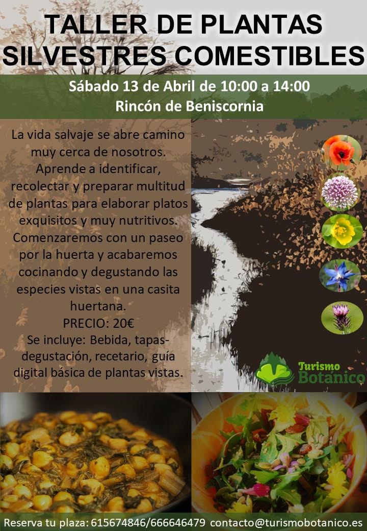 Taller de Plantas Silvestres Comestibles, con  Turismo Botánico