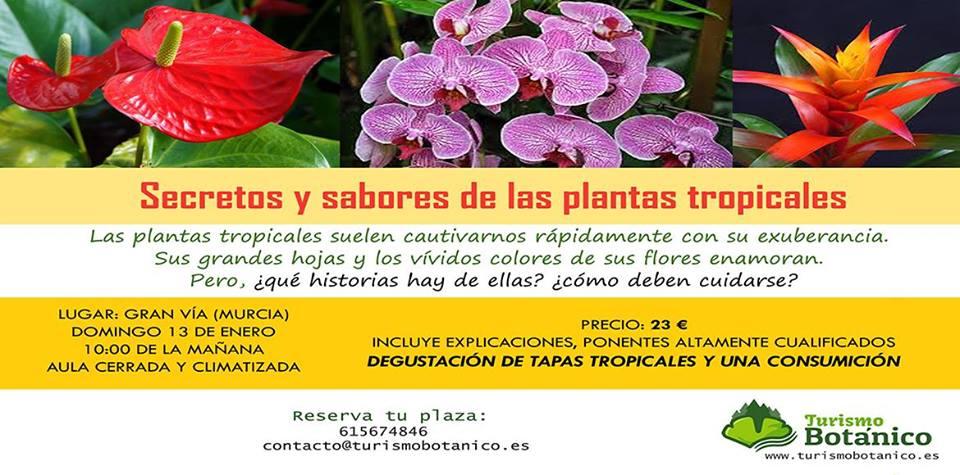 Secretos y sabores de las plantas tropicales, con Turismo Botánico